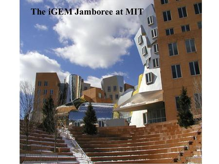 The iGEM Jamboree at MIT. iGEM 2004 5 teams iGEM 2005 13 teams Princeton Oklahoma ETH Zurich MIT Caltech Toronto Cambridge Texas Penn State Berkeley.