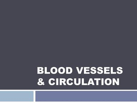 Blood Vessels & Circulation