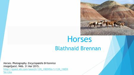 Horses Blathnaid Brennan Horses. Photography. Encyclopædia Britannica ImageQuest. Web. 31 Mar 2015.