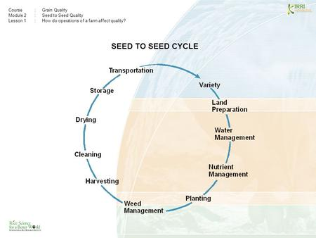 Course:Grain Quality Module 2: Seed to Seed Quality Lesson 1 :How do operations of a farm affect quality? SEED TO SEED CYCLE.