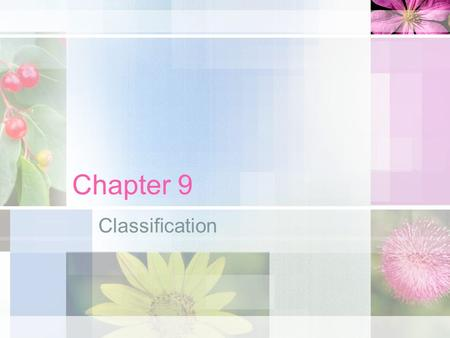 Chapter 9 Classification. Classification is the arrangement of organisms into orderly groups based on similarities.
