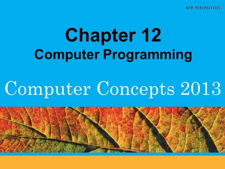 Computer Concepts 2013 Chapter 12 Computer Programming.