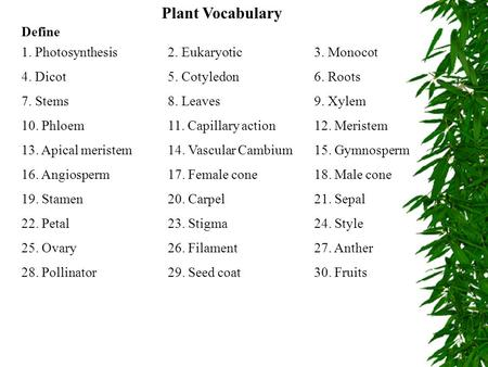 Plant Vocabulary Define 1. Photosynthesis 2. Eukaryotic 3. Monocot
