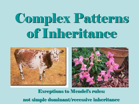 Complex Patterns of Inheritance Exceptions to Mendel's rules: not simple dominant/recessive inheritance.