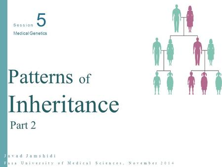 Javad Jamshidi Fasa University of Medical Sciences, November 2014 Session 5 Medical Genetics Patterns of Inheritance Part 2.