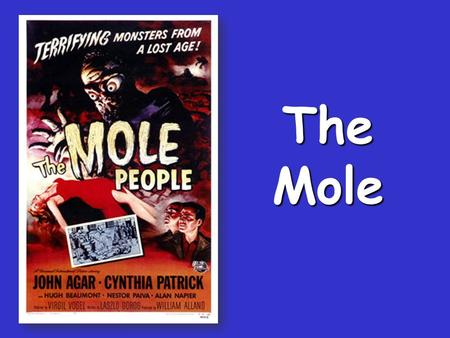 The Mole Standards Standards The Mole 1 dozen = 1 gross = 1 ream = 1 mole = 12 144 500 6.02 x 10 23 There are exactly 12 grams of carbon-12 in one mole.