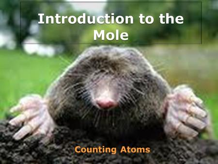 Introduction to the Mole Counting Atoms. The Mole A special unit used by chemists to express amounts of particles such as atoms, molecules, or ions. The.