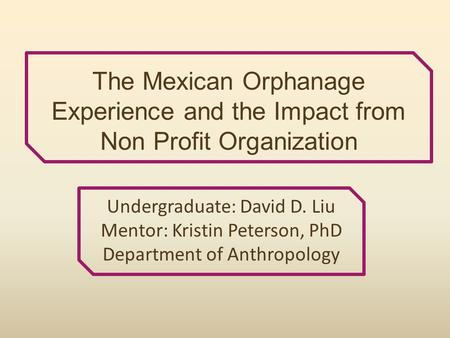 The Mexican Orphanage Experience and the Impact from Non Profit Organization Undergraduate: David D. Liu Mentor: Kristin Peterson, PhD Department of Anthropology.