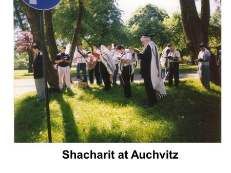 Shacharit at Auchvitz The infamous gate! Grandchild,Grandma,mother! 3 generations members of our group.