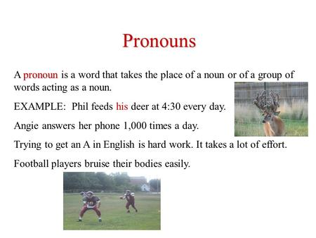 Pronouns A pronoun pronoun is a word that takes the place of a noun or of a group of words acting as a noun. EXAMPLE: Phil feeds his deer at 4:30 every.