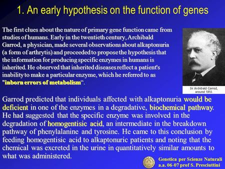 Genetica per Scienze Naturali a.a. 06-07 prof S. Presciuttini 1. An early hypothesis on the function of genes The first clues about the nature of primary.