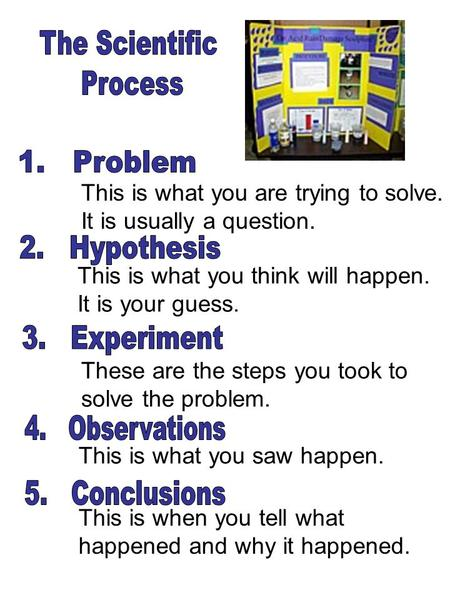 This is what you are trying to solve. It is usually a question. This is what you think will happen. It is your guess. These are the steps you took to solve.