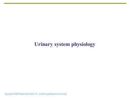 Copyright © 2006 Pearson Education, Inc., publishing as Benjamin Cummings Urinary system physiology.