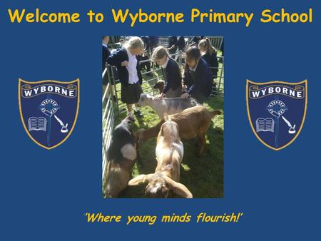Welcome to Wyborne Primary School ''Where young minds flourish!'