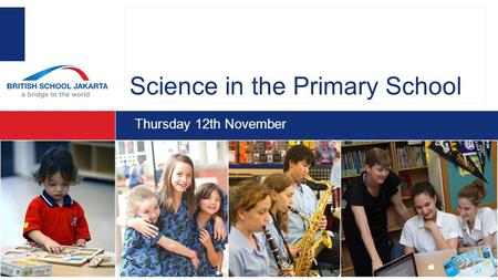 Science in the Primary School Thursday 12th November.