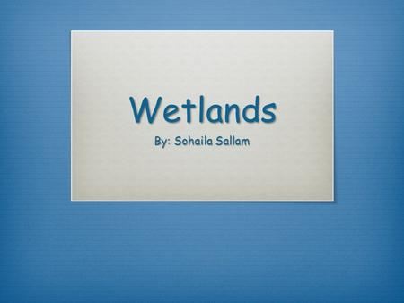 Wetlands By: Sohaila Sallam. Wetlands  Wetlands are areas of land where water covers the soil all year or just at certain times of the year. They are.