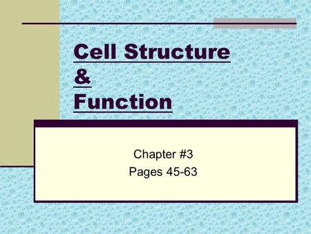 Cell Structure & Function Chapter #3 Pages 45-63.