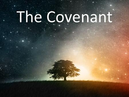"The Covenant. What Makes You Anxious? Genesis 15:1 1 After this, Abram had a vision and heard the L ORD say to him, ""Do not be afraid, Abram. I will."