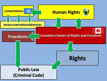 Various International Branches Human Rights Canadian Charter of Rights and Freedoms Rights Freedoms Public Law (Criminal Code) United Nations United Nations.
