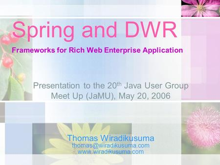 Spring and DWR Frameworks for Rich Web Enterprise Application Thomas Wiradikusuma  Presentation to the 20 th.
