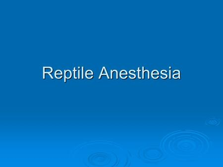 Reptile Anesthesia.  Injectable and inhalant anesthetics are commonly employed both for surgery and sedation for diagnostic or treatment procedures.