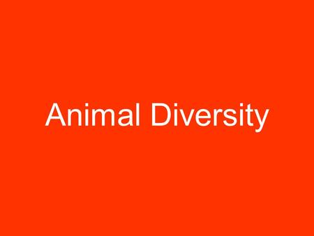 Animal Diversity. Animals are many- celled organisms that are made up of different kinds of cells.