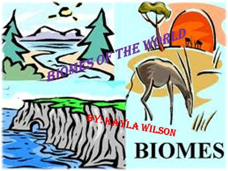 Biomes Of The World By: Kayla Wilson. Tundra Climate: Normally winter is about -34 degrees Celsius and summer is 3-12 degrees Celsius. Animals: Herbivores.