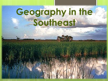 Geography in the Southeast. Lower Region  Beaches  Swamps  Wetlands  Great Dismal Swamp in south of Virginia and northern part of North Carolina 