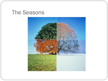 The Seasons.