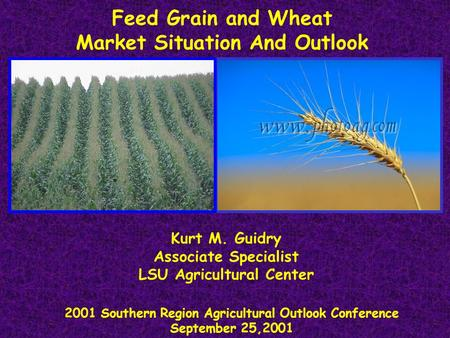 Feed Grain and Wheat Market Situation And Outlook 2001 Southern Region Agricultural Outlook Conference September 25,2001 Kurt M. Guidry Associate Specialist.