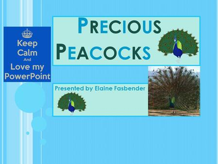 PRECIOUSPEACOCKSPRECIOUSPEACOCKS Presented by Elaine Fasbender.