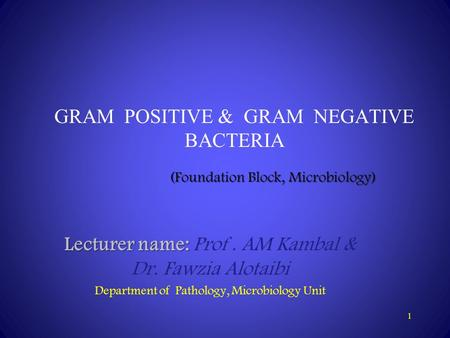 1 GRAM POSITIVE & GRAM NEGATIVE BACTERIA Lecturer name: Lecturer name: Prof. AM Kambal & Dr. Fawzia Alotaibi Department of Pathology, Microbiology Unit.