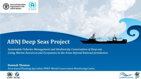 ABNJ Deep Seas Project Sustainable Fisheries Management and Biodiversity Conservation of Deep-sea Living Marine Resources and Ecosystems in the Areas Beyond.