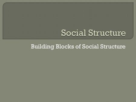 Building Blocks of Social Structure.  Competency Goal 3: The learner will develop an understanding of social interaction and social structure. 3.01 Define.
