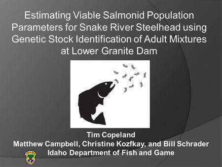 Estimating Viable Salmonid Population Parameters for Snake River Steelhead using Genetic Stock Identification of Adult Mixtures at Lower Granite Dam Tim.