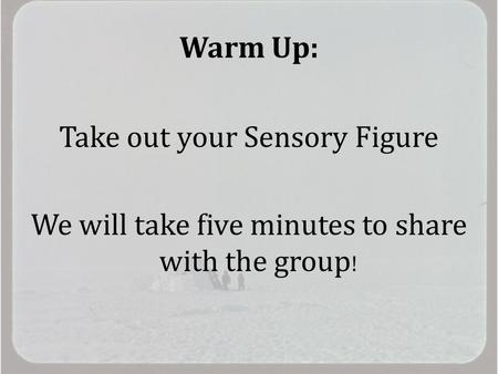 Warm Up: Take out your Sensory Figure We will take five minutes to share with the group !