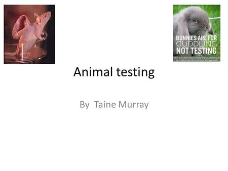 """advantage and disadvantages of drug testing on animals Alternatives to animal testing do not always work, however, because the system of a living organism can be unpredictable if scientists perform tests on computer models, test tube-grown cells or """"lower organisms"""" (such as eggs or invertebrates, rather than warm-blooded animals), they may not see as full a picture of the test results as they would with testing on live animals (or animals ."""