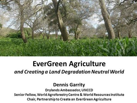 EverGreen Agriculture and Creating a Land Degradation Neutral World Dennis Garrity Drylands Ambassador, UNCCD Senior Fellow, World Agroforestry Centre.