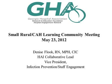 Small Rural/CAH Learning Community Meeting May 23, 2012 Denise Flook, RN, MPH, CIC HAI Collaborative Lead Vice President, Infection Prevention/Staff Engagement.