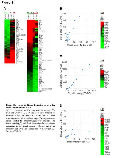Figure S1, related to Figure 1. Additional data for characterization of ES-SCs. (A) Heat maps from microarray analysis between ES- DCs and ES-SCs. (B-D)