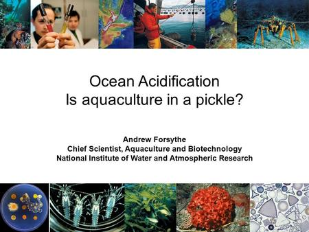 Ocean Acidification Is aquaculture in a pickle? Andrew Forsythe Chief Scientist, Aquaculture and Biotechnology National Institute of Water and Atmospheric.