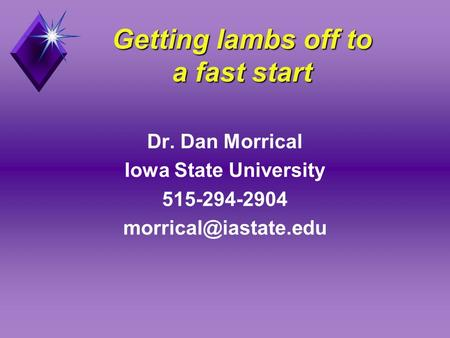Getting lambs off to a fast start Dr. Dan Morrical Iowa State University 515-294-2904