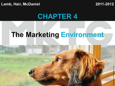 Chapter 4 Copyright ©2012 by Cengage Learning Inc. All rights reserved 1 Lamb, Hair, McDaniel CHAPTER 4 The Marketing Environment 2011-2012 © Mark Herreid/Shutterstock.com.