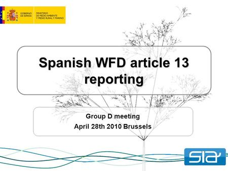 Spanish WFD article 13 reporting Group D meeting April 28th 2010 Brussels.