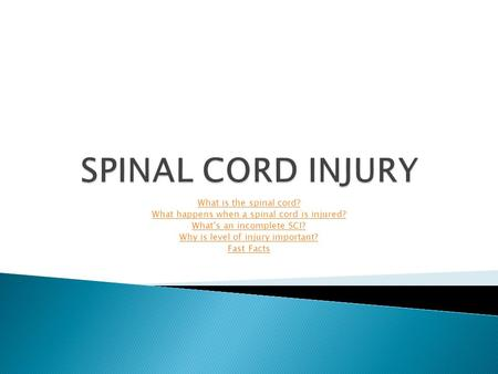 SPINAL CORD INJURY What is the spinal cord?