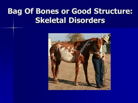 Bag Of Bones or Good Structure: Skeletal Disorders