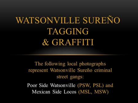 The following local photographs represent Watsonville Sureño criminal street gangs: Poor Side Watsonville (PSW, PSL) and Mexican Side Locos (MSL, MSW)