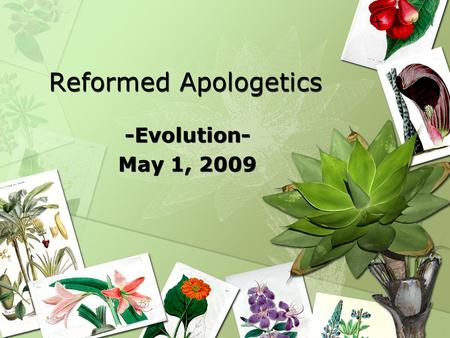 Reformed Apologetics -Evolution- May 1, 2009 -Evolution- May 1, 2009.