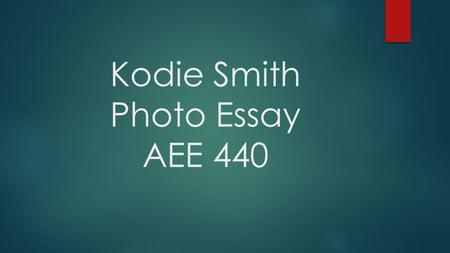 Kodie Smith Photo Essay AEE 440.  My name is Kodie Smith and I am a senior in Wildlife and Fisheries Science, Wildlife Option. I grew up in a small town.