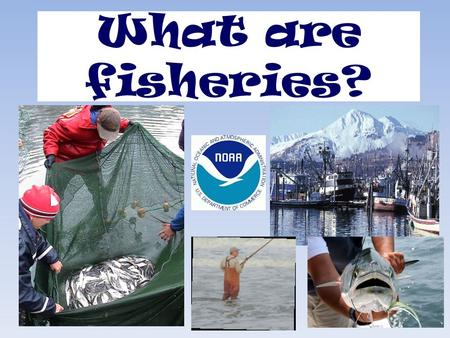 "What are fisheries?. What do you think of when you hear the word ""FISHING""?"